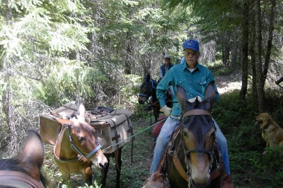 Work and Experience the PCT on Horseback